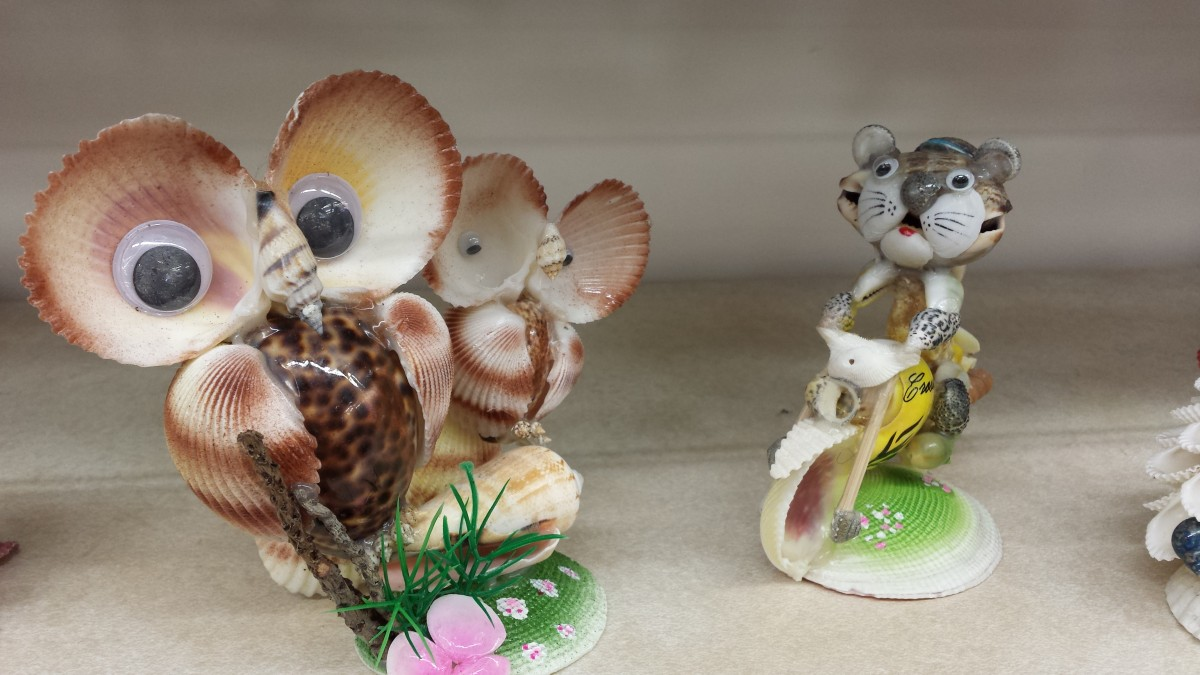 12 must have sea shell souvenirs