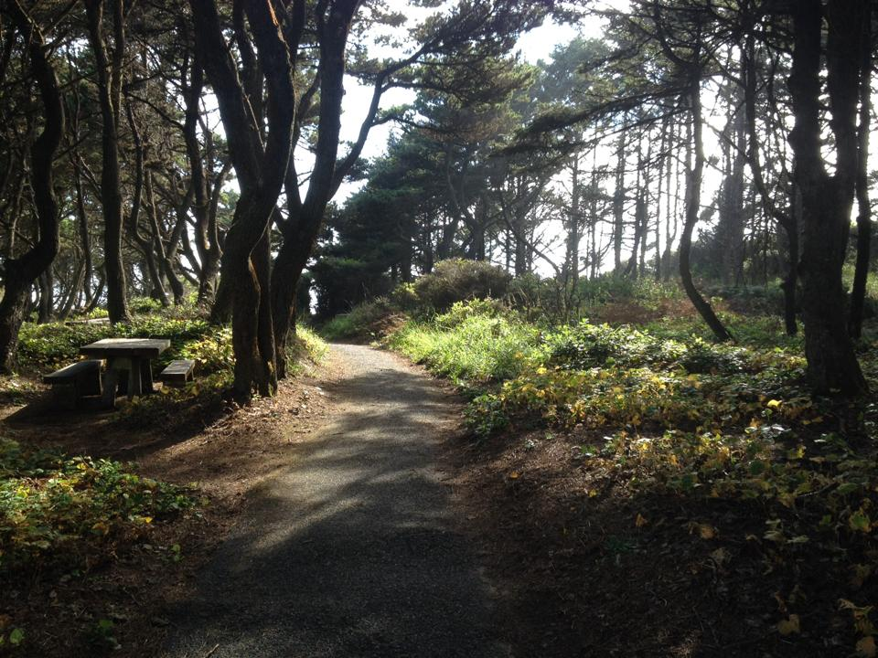 """""""A walk along a path on the Oregon Coast during our stay at the Embarcadero in Newport Beach"""" - Member Alan B."""