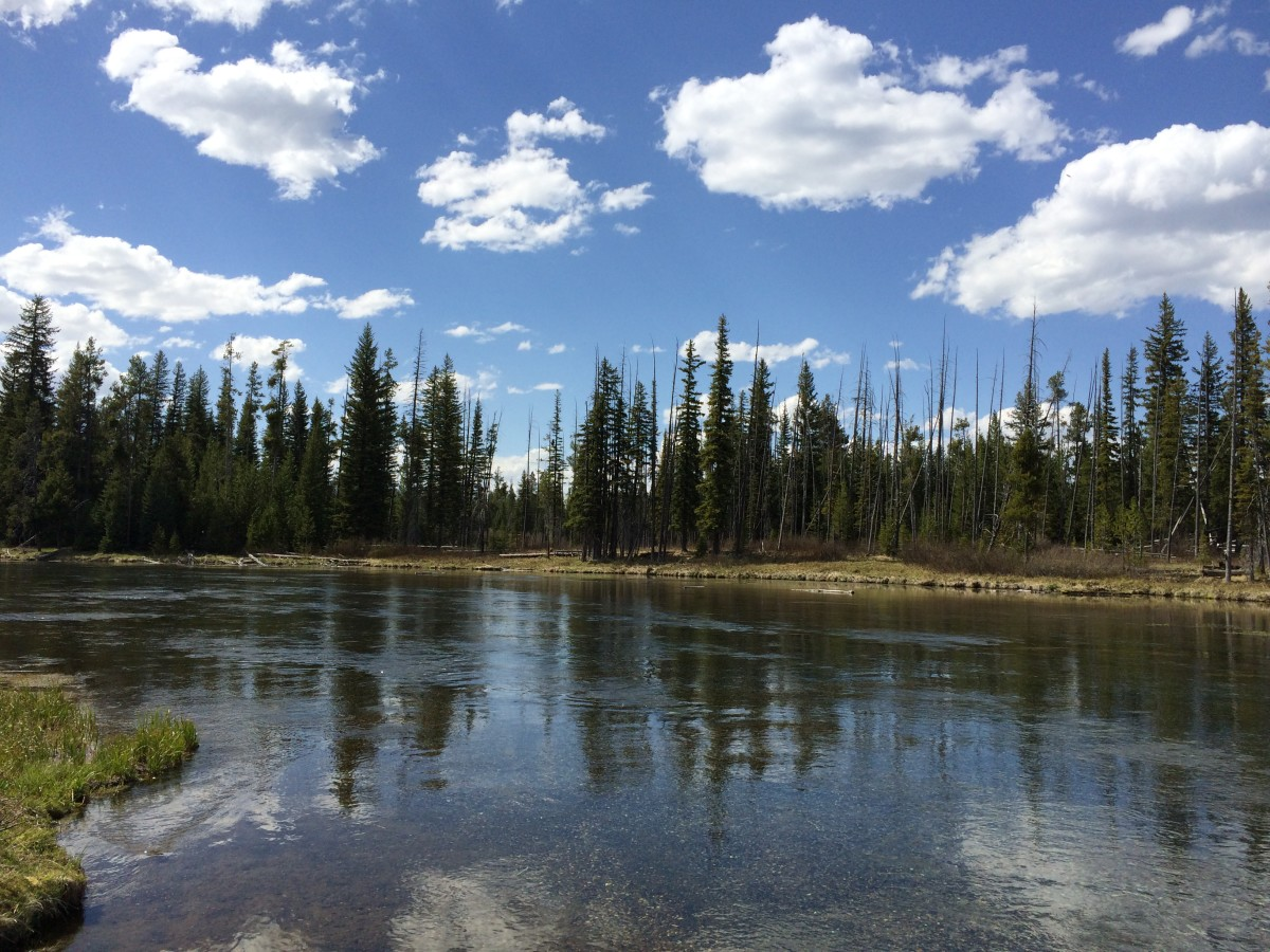 Beautiful Scenery from our visit to Island Park, Idaho and Yellowstone National Park