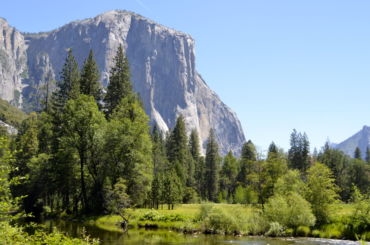 El Capitan in Yosemite National Park, California. - Member Lois M.